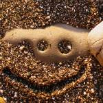 """""""Smiley in Sand"""" by evansphotography"""