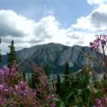 """""""Yukon, Canada"""" by lolodrake"""