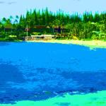 """Napili Bay-Maui by Donovan"" by Donovan2012"