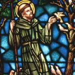 """St Francis of Assisi in stained glass"" by neilepi"