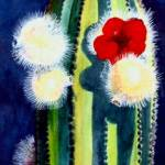 """Organ Pipe Cactus Bloom"" by PatBlair"