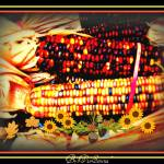 """~""Thanksgiving Corn""~"" by vivsirena"