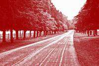 Country Road Red