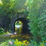 """Stream under the Bridge"" by adamspix"