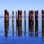 """Pilings2"" by rdfrank67"