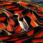 """Bird on a Wire"" by rdfrank67"