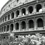 """Colosseum Classic"" by RussellRice"