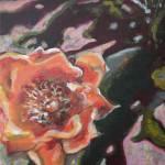 """Cactus Blossom"" by artbyaleksandra"