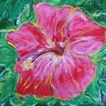 """Bahama Hibiscus"" by HeidiZeile"