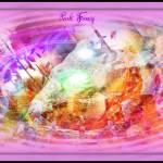 """""""Pink Fancy"""" by fotofanatixh"""