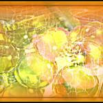"""Spidee Bubbles"" by fotofanatixh"