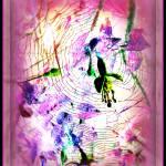 """""""Spidee Memorial"""" by fotofanatixh"""