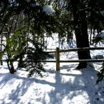 """""""Snow Fence"""" by SnowInSummer"""