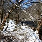 """Snowy River"" by SnowInSummer"
