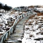 """Snowy Staircase"" by HumanNature"