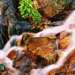 """Mossy Rocks Misty Creek"" by flowphotography"