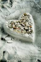 broken seashells of the heart