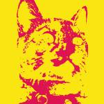 """punkrockkittycat"" by pixlPushr"