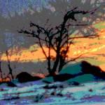 """Painted Sunset"" by shelshots"