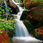 """""""Stairs Gulch Waterfall"""" by flowphotography"""