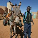 """Mauritanian Boy and Donkey"" by AndreaMoorePhotography"