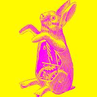 mechanicalrabbit Art Prints & Posters by mike leonard