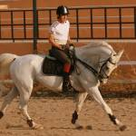 """White Horse"" by nightofforce"