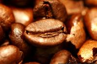 home-roasted coffee beans - ethiopian harar horse