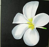 THE WHITE FLOWER