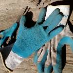 """Blue Gardening"" by kyramoonunique"