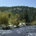 """Beautiful Mountain Stream In Wyoming"" by tex"