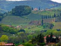 view_from_san_gimignano_2