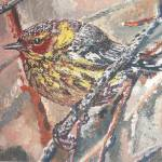 """CAPE MAY WARBLER"" by RuthDriedger"