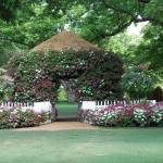 """arboretum"" by jsethphotography"