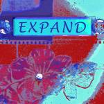 """Expand"" by lisascadron"