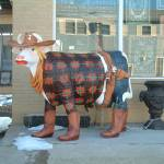 """""""2-5-05 Cowboy Cow"""" by Mick553"""