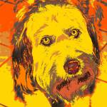 """Pop Art Labradoodle"" by malibuitalian"