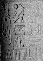 Hieroglyphics of Ramses II