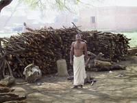 Wood Cutter, Allahabad India