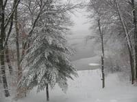 Lake Cochituate Snowy View