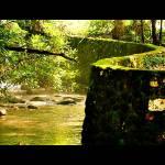 """Rock Creek Park"" by astanse"