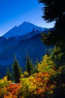 Mount Baker in Autumn