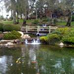 """Japanese garden"" by Iphoneunplugged"