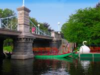 Public Garden - Lagoon Bridge Swan Boats (No Text)