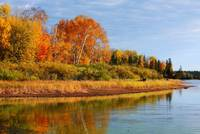 Autumn on the Flowage