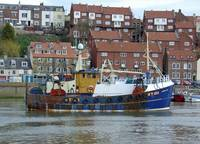 Fishing Trawler, Whitby   (15698-RDA)
