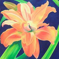 Orange Daylily Art Prints & Posters by ronmeadow