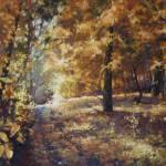 """Trail through Maples"" by corenaricks"