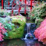 """Japanese Garden"" by GinaCatarra"