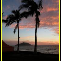 Evening in Mazatlan Art Prints & Posters by Roger Jenkins